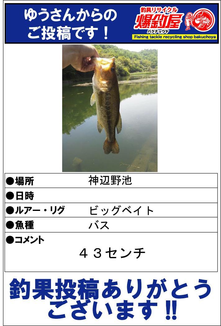 ゆうさん20140522