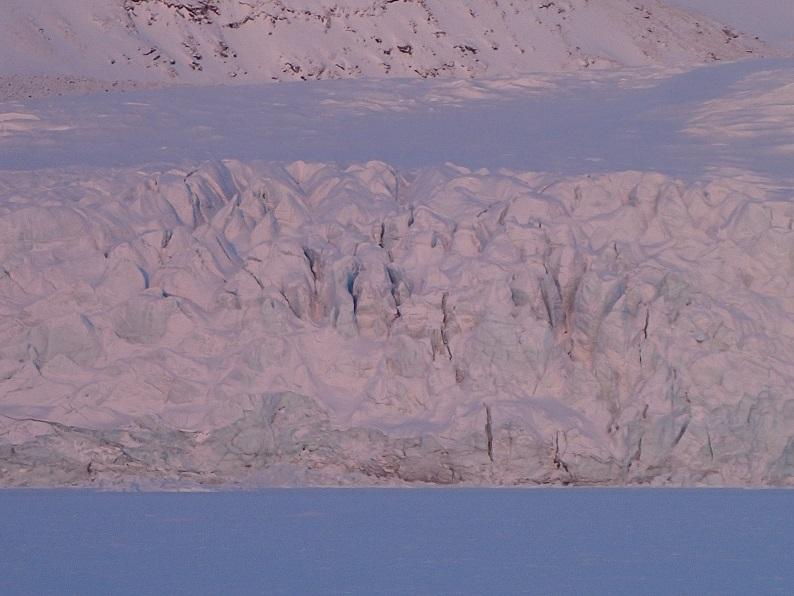 ブログ写真(Meehan氷河の先端)