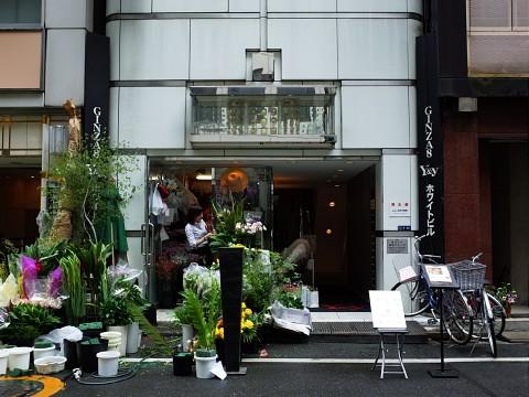 kurokawa18.jpg