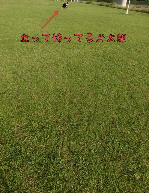 CIMG4191.jpg