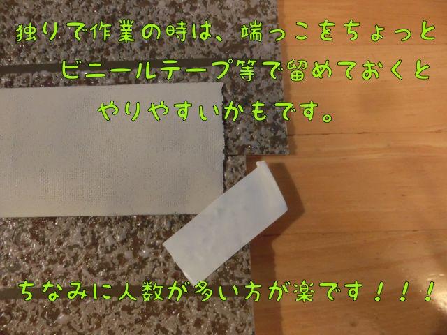 CIMG5238.jpg