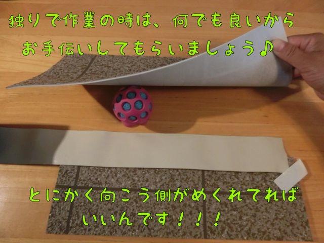 CIMG5240_20140731145629a8f.jpg