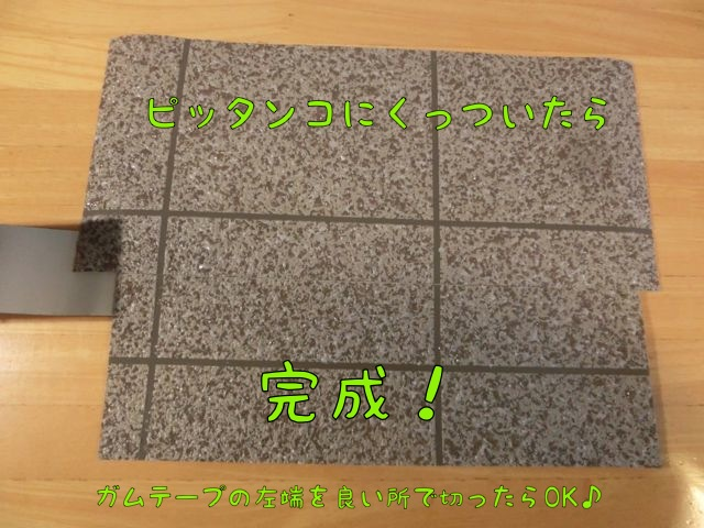 CIMG5246.jpg