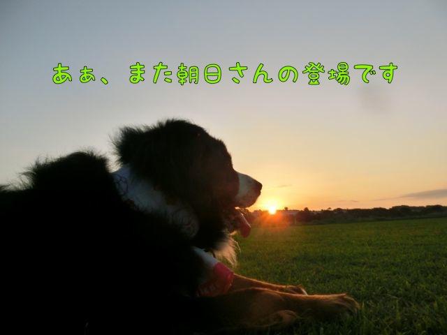 CIMG5467.jpg