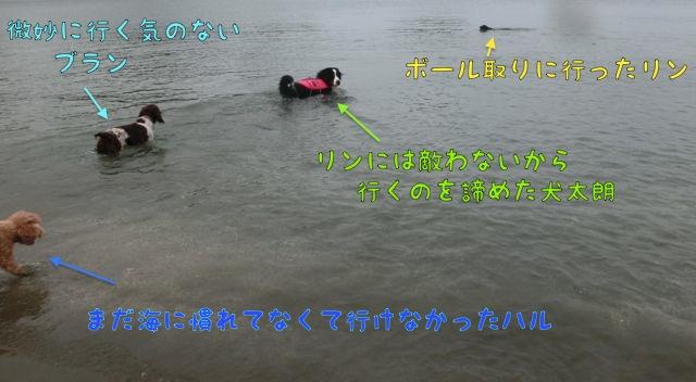 CIMG6412.jpg