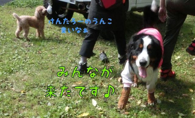 CIMG6811.jpg