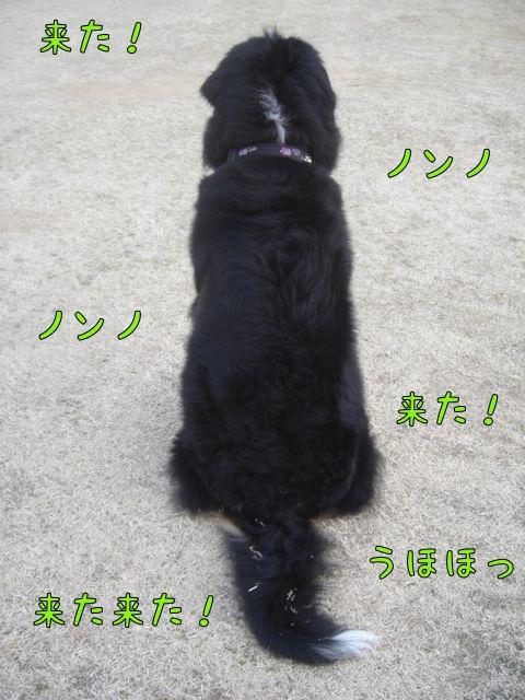 CIMG7871.jpg