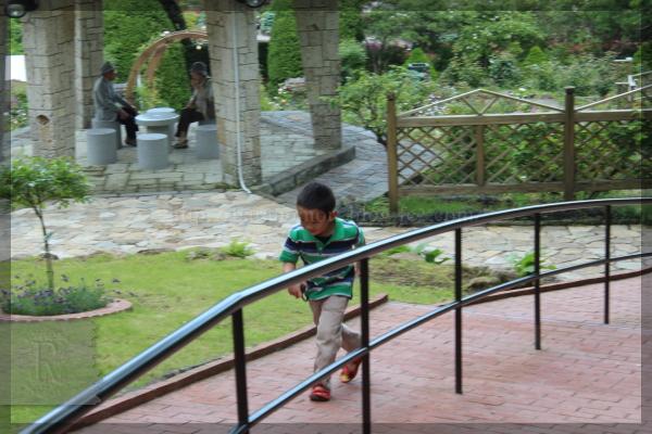 旅行 箱根 強羅公園 20140522