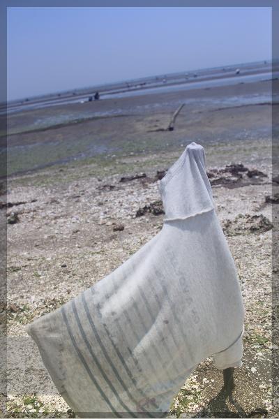 潮干狩り 20140531