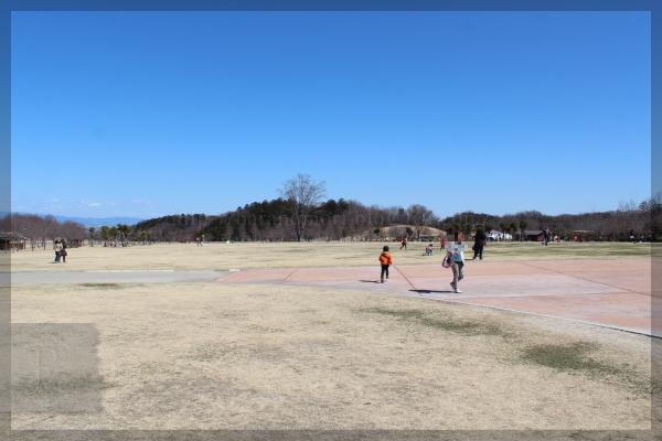 観音山ファミリーパーク 20140322