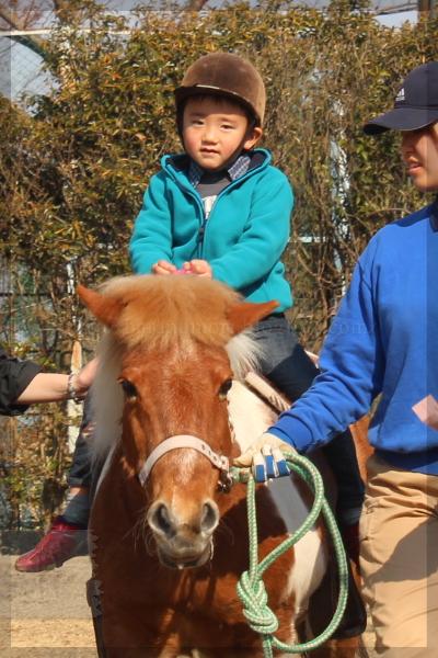 埼玉子供動物公園 20140316