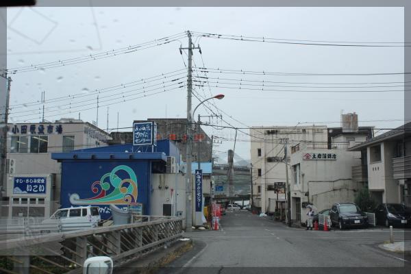 旅行 箱根 小田原 アカオハーブアンドローズガーデン 20140521
