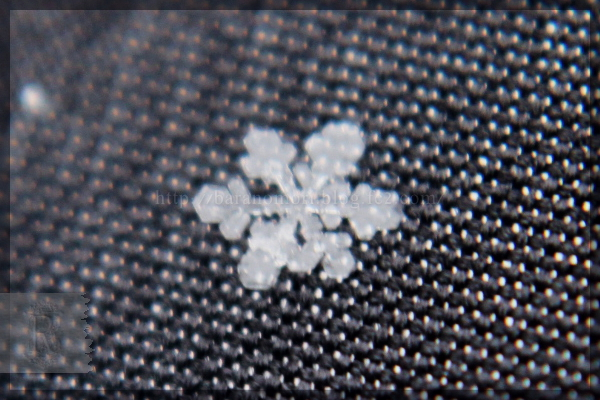 雪の結晶 20140214