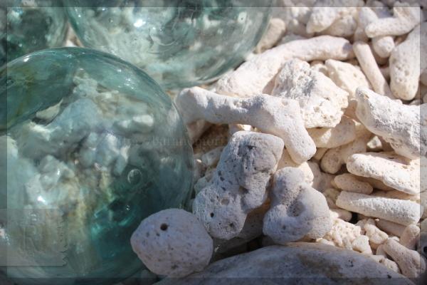 南東角 サンゴ ガラス玉 海辺 20140324