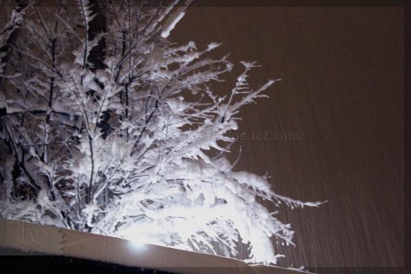 雪 20140214