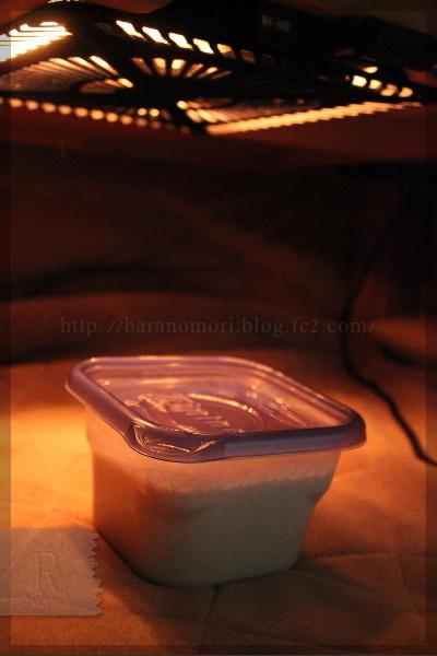 米ぬか乳酸菌液 20140222 豆乳ヨーグルト