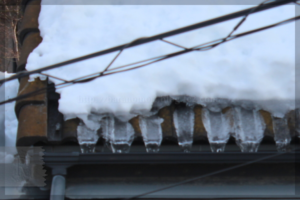 屋根の雪 20140220