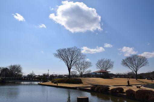 035-柏原池公園