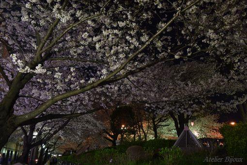 070-隅田公園