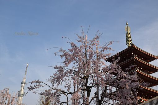 014-五重の塔-スカイツリー