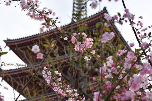 027-花と五重の塔