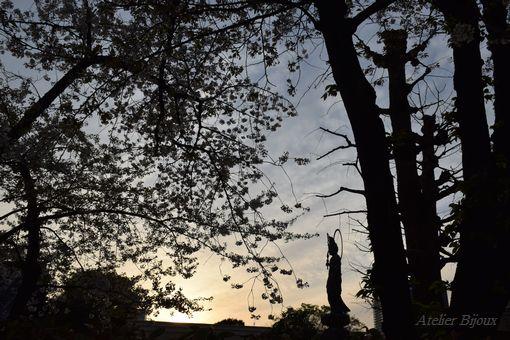 060-桜と像のシルエット