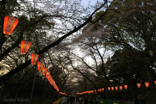 006-上野公園