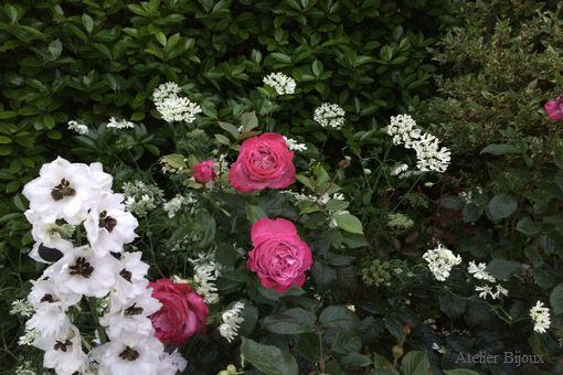 001-薔薇