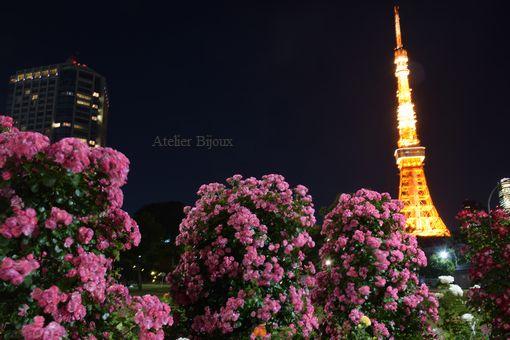 128-薔薇&東京タワー