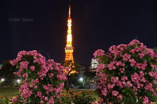 130-薔薇&東京タワー