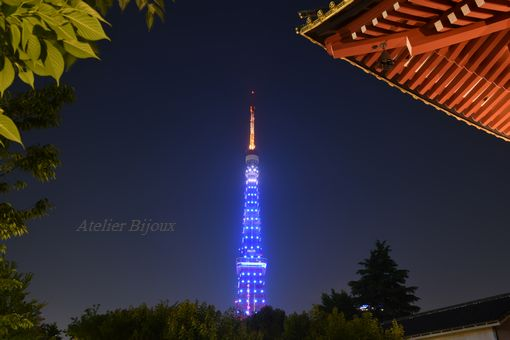 008-寺-東京タワー