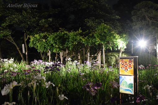 062-菖蒲園