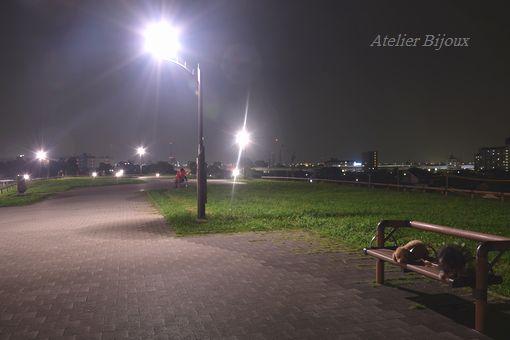 052-ぷぅももか舎人公園
