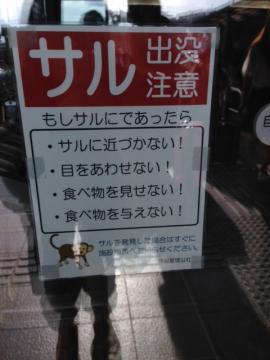 moblog_6da5fdfa.jpg