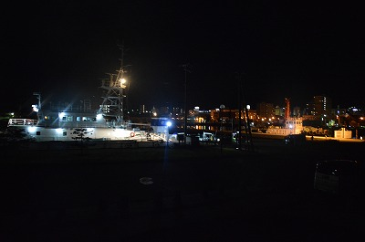臨海公園の船