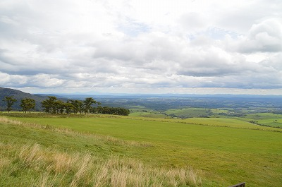 牧場からの景色