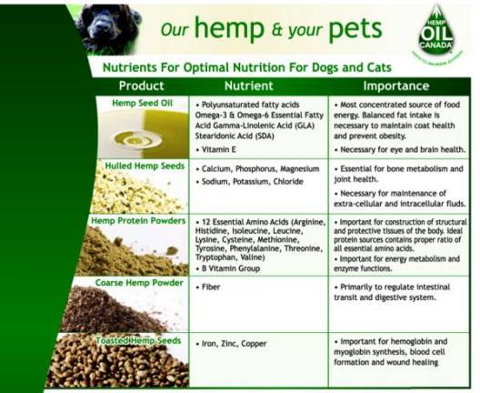 hemp for pet