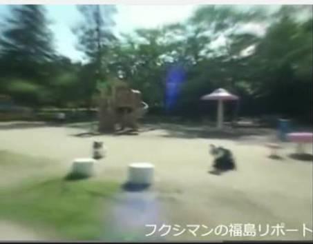 koriyama1.jpg