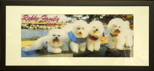 第12弾 Rakko Family 2003