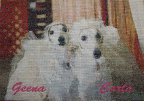 第10弾 Carla & Geena