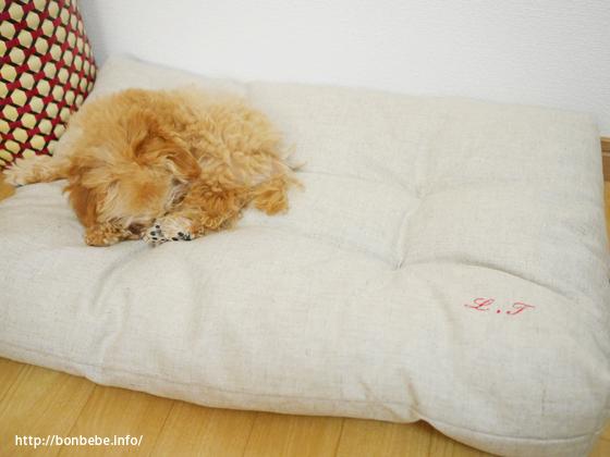 犬用 ベッド