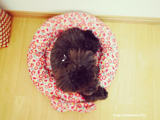 犬 ベッド