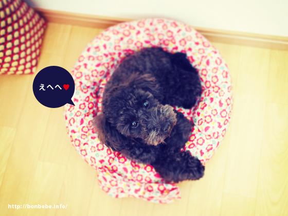 犬 ベッド 花柄