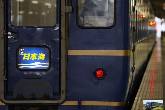 nk482010.jpg