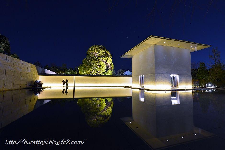 2014.03.22鈴木大拙館ライトアップ6