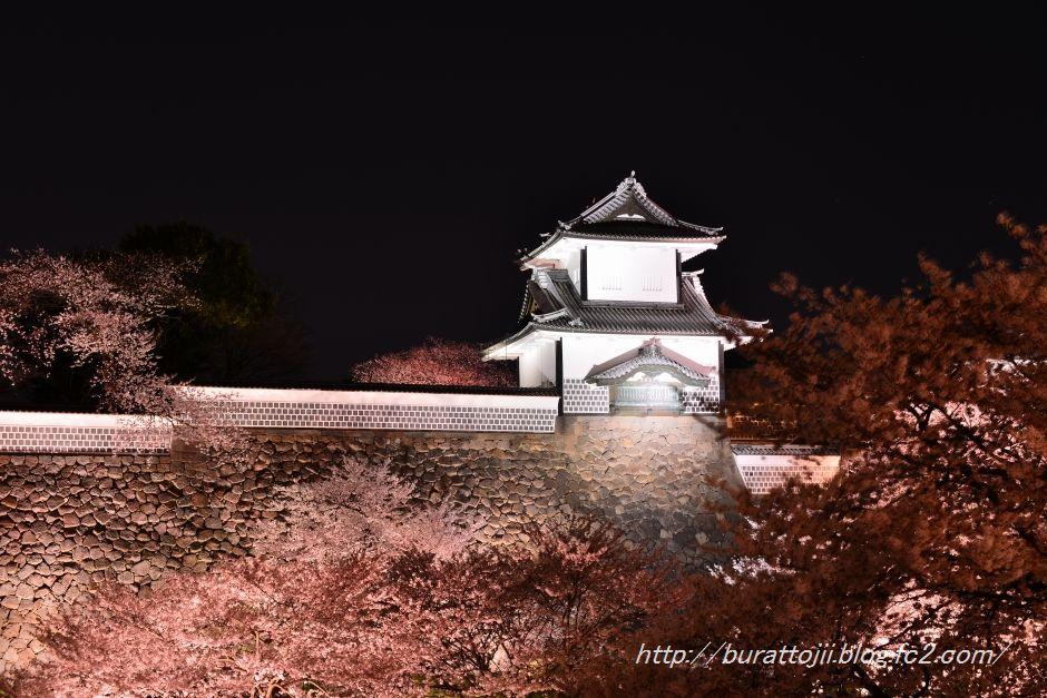 2014.04.07金沢城公園の桜5