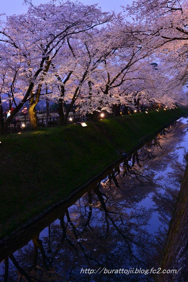 2014.04.08金沢城桜5
