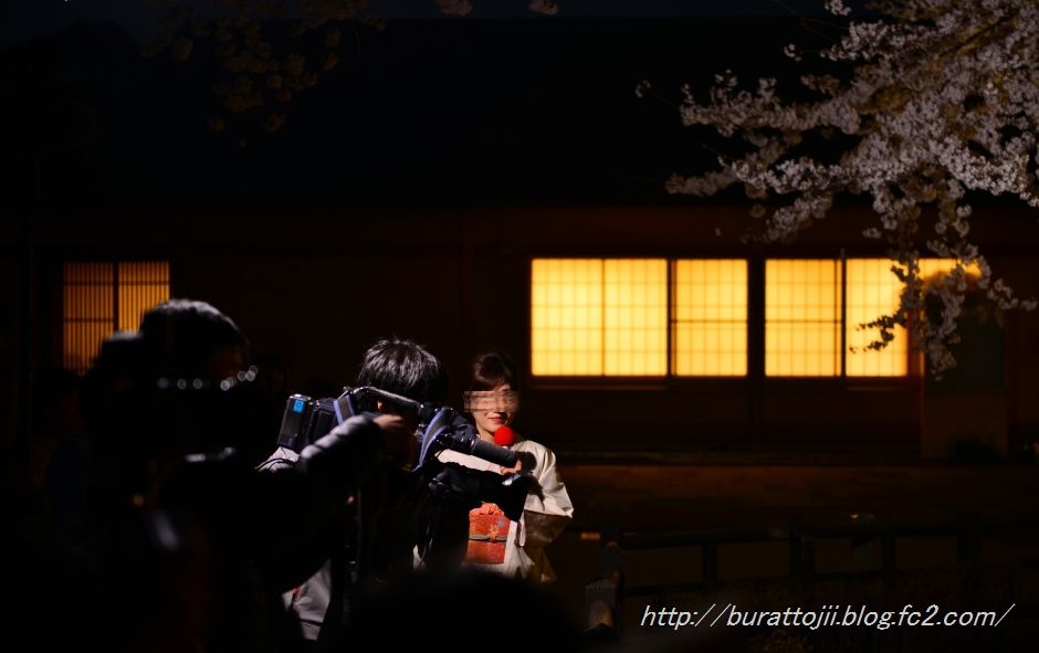 2014.04.08金沢城桜8