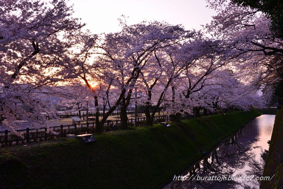 2014.04.11早朝の金沢城1