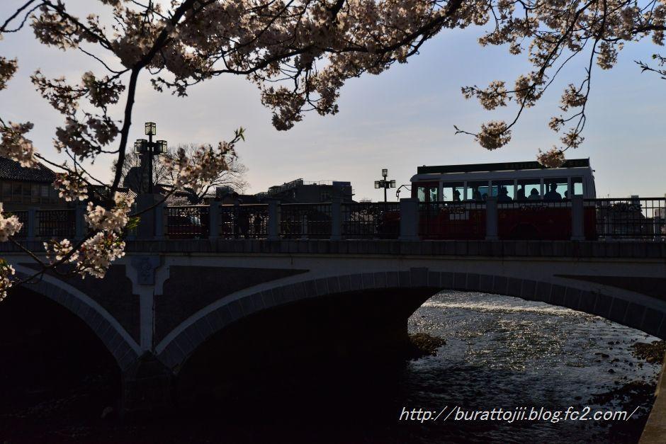 2014.04.12主計町の桜6